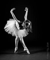 DSC_0689b wm (Susan Day-Jeschke) Tags: ballet pose studio dance swan model photoshoot posing dancer modelling tutu laces balletslippers balletshoes toesshoes swanpose