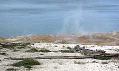 Occasional Geyser & runoff channel (1 June 2016) 2 (James St. John) Tags: occasional geyser lakeshore group west thumb basin yellowstone volcano wyoming hot spring springs geysers