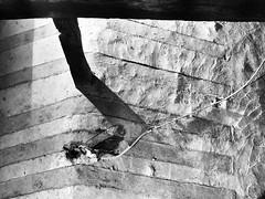 cerrotti in chiesa (FloBue) Tags: 2016 schwarzweiss blackandwhite biancoenero contrastoalto kontrast contrast church chiesa kirche architettura architektur architecture astratto abstract abstrakt