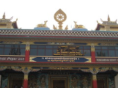 IMG_2462 (Sasha India) Tags: india buddhism karnataka indien hindistan buddhismus 印度 भारत littletibet הודו 인도 இந்தியா الهند буддизм هندوستان индия ινδία індія карнатака հնդկաստան אינדיע อินเดีย ભારત ინდოეთში