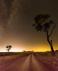 Night as Day - Banchory - Queensland - Australia (andrew.walker28) Tags: night sky dark long exposure stars starlight nightscape landscape light pollution yellow farm farmland countryside