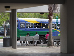 bus musical (waldy5897) Tags: color bus puertorico musica notas em10 paople