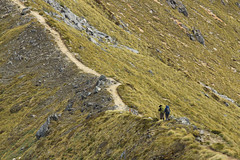 The path in front of you (robertdownie) Tags: life park new people mountain mountains trek walking random hiking path philosophy ridge trail zealand national nz future trak ph past tramping kepler steep fiordland treking