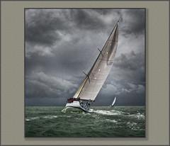 'Venomous', Round the Island 2016 (rogermccallum) Tags: solent sail sailing roundtheisland sea frame hdr platinumheartaward gününeniyisi thebestofday