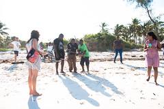 D75_1745 (Andy Kahumbu) Tags: kenya watamu hawksbill turtle rescue localoceantrust turtlerelease seaturtle