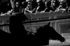 Palio (vito.nobile) Tags: palio siena toscana tuscany italia italy cavallo cavalli horse ombra bn bw