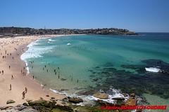Bondi - Bondi Beach (soyouz) Tags: aus australie bondibeach geo:lat=3389445082 geo:lon=15127396524 geotagged newsouthwales northbondi mer plage bondi australiel