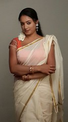 South actress Madhu Chanda Photos Set-1-Hot In Saree (15)