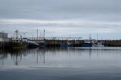 Fishing boats in the harbor of Grande-Rivire, Qubec (Ullysses) Tags: fishingboats fishingvessels bateauxdepeche fishingharbor havredepeche granderivire qubec canada gaspesie summer t calmwaters