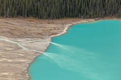 IMG_7323 (Yani Ioannou) Tags: alberta canada glacial water banff lake peyto
