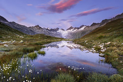 Morning Reflection (Frederic Huber | Photography) Tags: landschaft canoneos5dsr frederichuber landscape wonderpana haslital berner oberland bernese highland guttannen meiringen wallis grimselpass grimsel oberaarhorn oberaargletscher finsteraarhorn morning reflection morgenlicht alpine sunset alpen sunrise sonnenuntergang sonnenaufgang dawn blue hour glacier gletscher mountain berge snow ice schnee eis peak gipfel water wasser mirror reflektion wollgrass cotton grass sky himmel red rot canon eos 5dsr 1124 fotodiox free arc nd grad polarizer explore explored