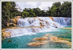 Cascades Aqua Azul  - Cascadas Aqua Azul (captimages13) Tags: mexico waterfall cascades palenque mexique chiapas cascadas aquaazul captimages