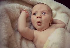 (anahidrojas) Tags: baby familia retrato nios retratos newborn bebe nio peque petit recien bebes petito nacido reciennacido ojosazules