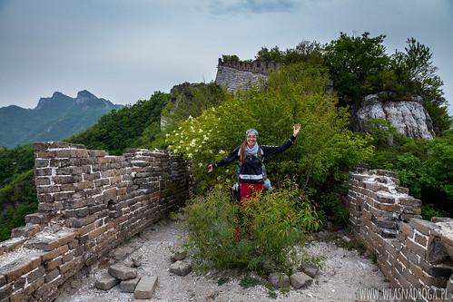 Dziki Mur Chiński