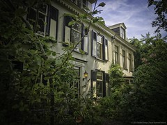 sunbathing... (ParadoX_Design) Tags: sunlight house green architecture de olympus hidden shutters hoge hilversum shrubbery omd gooi jzn cornelis heemskerk groot em10 naarderweg