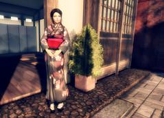 Turning [Back] Japanese (Marion Falworth) Tags: secondlife sl avatar virtual kyoto japan kimono okobo catwa slink bare rose anachron