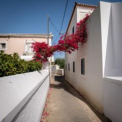 Spetses Island, Greece (Ioannisdg) Tags: travel summer vacation colour beautiful island holidays europe flickr greece gr attica spetses ioannisdg ioannisdgiannakopoulos gofspetses