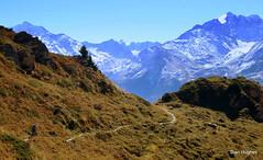 Autumn Riding around Verbier  (94) (Carl and Sian) Tags: orange alps switzerland mtb mountainbiking verbier singletrack orangefive bikeverbier alpinesingletrack carlandsian