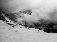 kleine Scheidegg (Steffi-Helene) Tags: schnee snow mountains alps nature montagne schweiz switzerland blackwhite suisse outdoor berge neige alpen noirblanc naturellement berneroberland swfotos