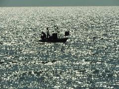 pescatore (giovanni tiezzi) Tags: light sunset sea italy sun mer evening soleil fisherman candles italia tramonto mare tuscany toscana sole luce controluce pescatore sera