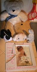 Bear & Bunnies Mourn Marie Craccident (shiroibasketshoes hopper) Tags: bunny bunnies rabbit rabbits photo damage broken cracks frame sentiment sentimental treasure accident singer pretty beauty beautiful idol japan japanese