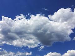 Cotton (DannyiPhonePhotog) Tags: blue white puffy cloudy clouds cloud sky oudoor summer flying high hot sun pool flowers birds planes porn pillowy pillow pillows cumulus