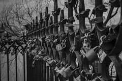 Soadores (Jos Manuel Durn) Tags: praga praha candados padlocks repblica checa turismo valla moldava bn blackandwhite bridge prague