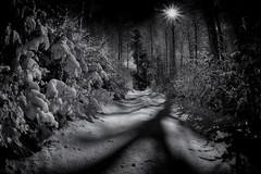 Winter Gibelegg (Bugtris) Tags: 815f4l landschaft fisheye hdrdri sw schnee canon 5dmkiii gibelegg winter snow shadows