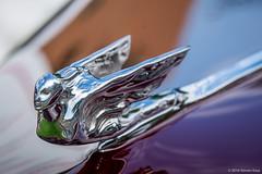 1941 Cadillac Hood Ornament 2016 Steven Karp (kartofish) Tags: hoodornament cadillac flyinggoddess fujfilm xt1 newhope autoshow buckscounty pennsylvania chrome abstract automobile auto car depthoffield