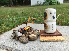 Whahahaha! (dlv1) Tags: campfire fire flame smore man funny cute chocolate grahamcracker toothpicks miniature