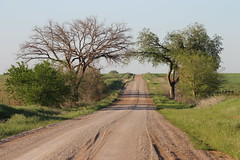 Down a Country Road (jHc__johart) Tags: road outdoors trees countryroad oklahoma dirt fields dirtroad