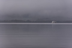 Out of the Mist (Gary Ellis Photography) Tags: balloch lochlomond scotland uk westdunbartonshire winter air beautiful beauty boat cold colorimage colorful colourimage colourful cool cruiseship daytime digital environmental exterior ferry frontview gorgeous highlands hill historic lake landscape liquid loch longexposure lowperspective lowview morning mountain outdoors outside park recreation sightseeing tourboat tourist unitedkingdom water wet