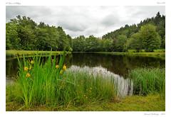 Ceaux Allgre (BerColly) Tags: france auvergne hauteloire ceaux paysage landscape etang pond ciel sky nuages clouds bercolly google flickr