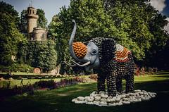Majestic (Melissa Maples) Tags: ludwigsburg germany europe nikon d5100   nikkor afs 18200mm f3556g 18200mmf3556g vr residenzschloss palace blhendesbarock garden summer krbisausstellung pumpkins pumpkin festival sculpture art green elephant castle