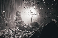 THE FLAMING LIPS BY ROGER HO