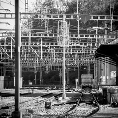 094/365: Two Kinds of Mess (haslo) Tags: trees bw lines metal wire power tracks trains olympus technical m42 f28 omd 135mm em1 rigid project365 autoberoflex 115in2015