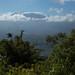 Os primeiros vulcões aparecem