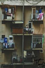 Simetria (Javier Alejandro .M) Tags: city light urban macro art love luz canon vintage noche cool arquitectura raw arte venezuela dia niños fresh caracas niña deporte 75300mm futbol aire fury eosrebel lospalosgrandes urbanocity canont5 urbanociti
