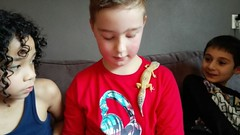 Kinderfeestje van Exotus Serpenti