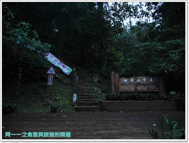 花蓮鯉魚潭螢火蟲賞蝴蝶青陽農場攝影花蓮旅遊image032
