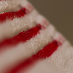 MacroMondays_Stripes 005 (VinceFL) Tags: red white macro manfrottotripod nikonmll3 afsdxmicronikkor85mmf35gedvr nikond7100 vincefl macromondaysstripes