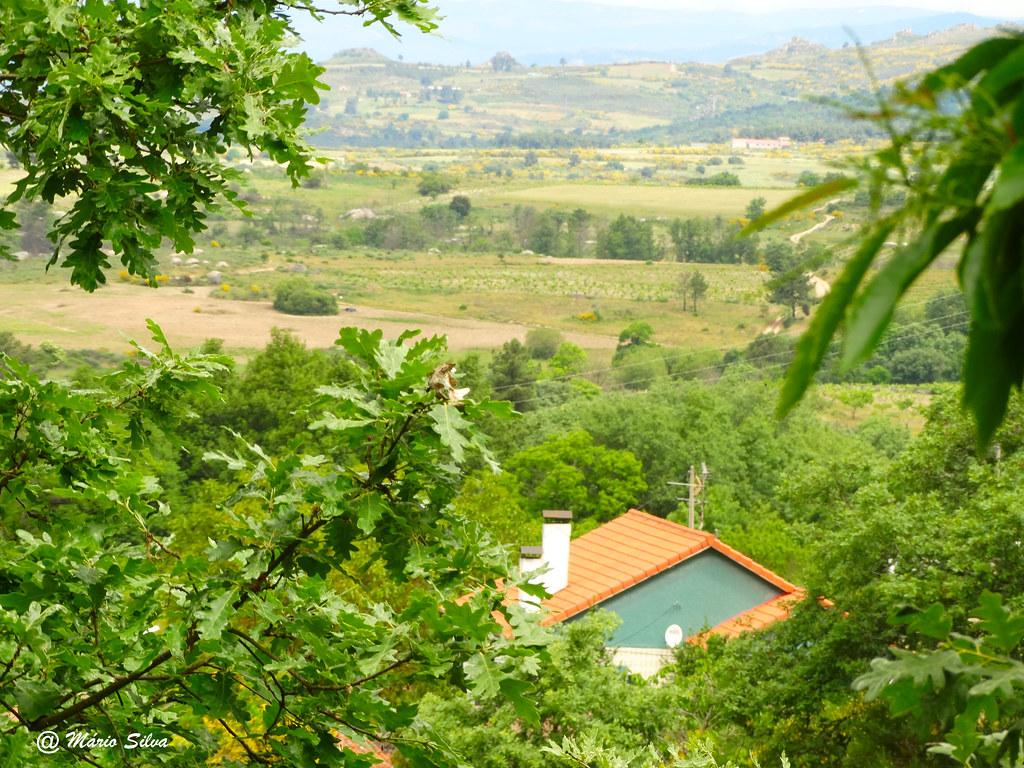 Águas Frias (Chaves) - ... uma casa  ... por entre o arvoredo ...