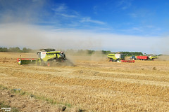Wheat Harvet 2016 | CLAAS (martin_king.photo) Tags: summer sky green field weather clouds season photo king martin wheat harvest tschechische republik machinery machines agriculture terra trac 2016 powerfull claas newholland lexion v1200 annaburger terratrac martinkingphoto lexion780 claaslexion780apshybrid claasv1200header havest2016