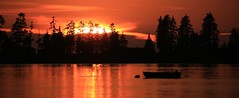 Summer's Fiery Sunset Panorama Kenai Peninsula Alaska USA (eriagn) Tags: fiery sunset panorama kenaipeninsula alaska usa boat dinghy silhouette red gold trees reflections volcano house dwelling bay sea water inlet calm summer hot tones hues eriagn ngairehart kasitsnabay birds gulls flare