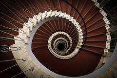 Red Carpet (michael_hamburg69) Tags: red rot stairs germany deutschland stair steps stairwell stairway escalera scala bremen escalier redcarpet rampa treppenhaus escala blockb ле́стница photowalkmitankeknipst doventorscontrescarpe172 amtfürversorgungundintegrationbremen integrationsamt