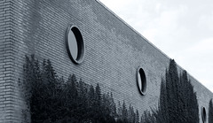 Factory Eyes (mbler) Tags: factory windows round circle eyes foliage city industry