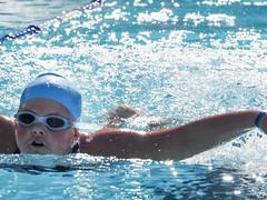 EM140049.jpg (mtfbwy) Tags: pool swim team dolphins rec gwyneth rockyriver northolmsted
