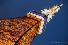 (Shinya001) Tags: tokyo tower  tokyotower