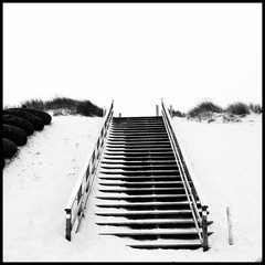 The Stairs (LiesBaas) Tags: hieraandekust duinen dunes lost sand zand liesbaas iphotography iphone retrica bw zw trap thestairsbyliesbaas
