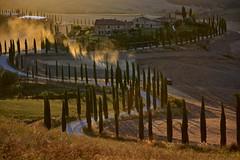 Cypress road, Baccoleno (Antonio Cinotti ) Tags: landscape paesaggio toscana tuscany italy italia siena hills colline campagnatoscana cretesenesi asciano nikond7100 nikon d7100 rollinghills nikon1685 summer estate baccoleno cypress cipressi
